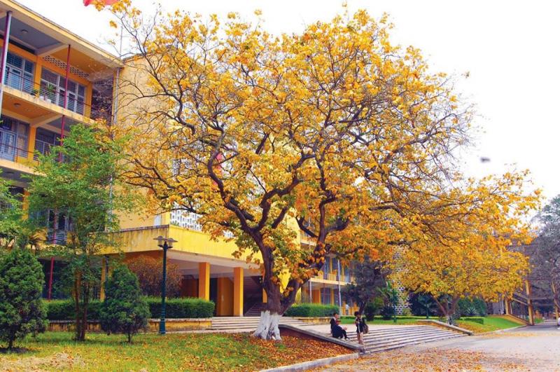 Trường Đại học Bách khoa Hà Nội