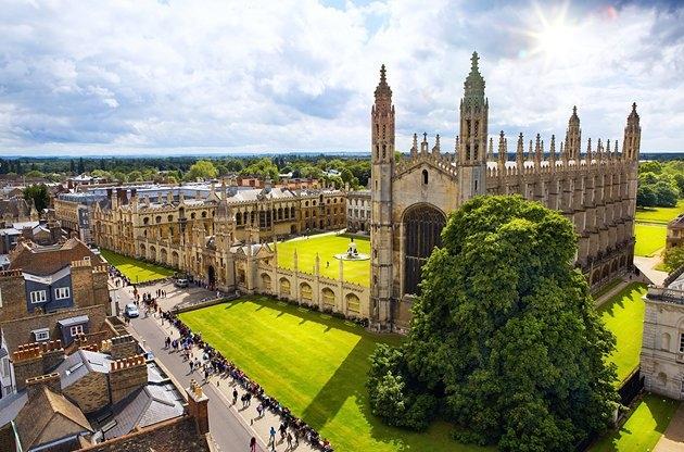 Trường bao gồm 6 trường đại học nhỏ, sở hữu 150 khoa và các viện khác