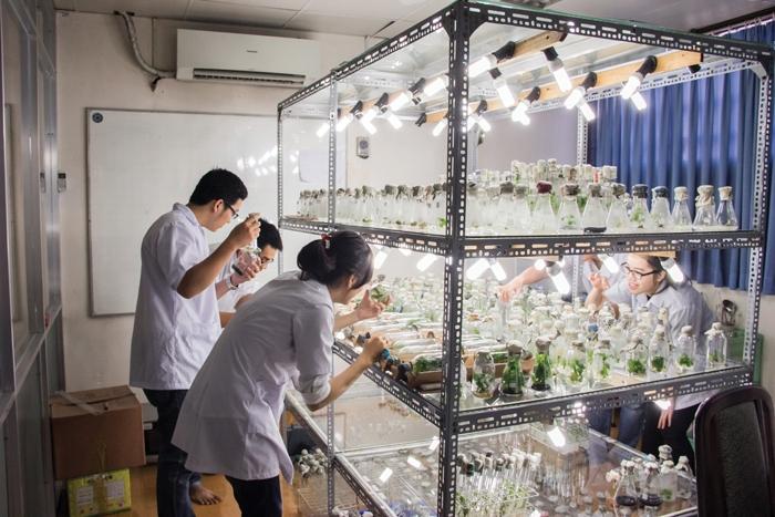 Sinh viên ngành Công nghệ sinh học của trường