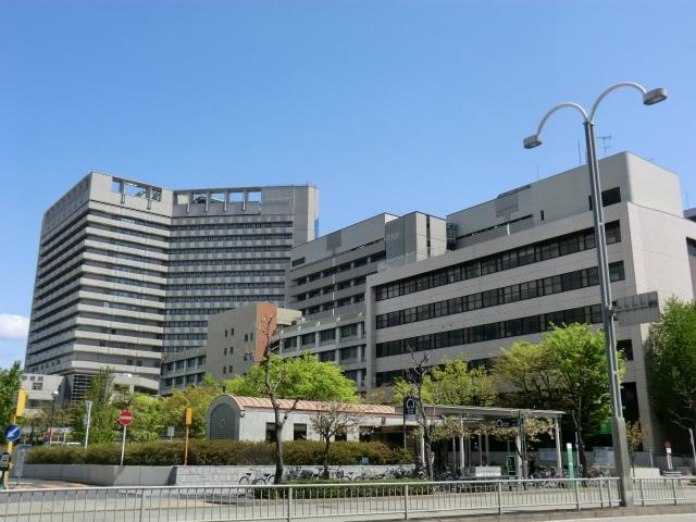 Đại học Nagoya sở hữu một bệnh viện, có 15 trường đào tạo chuyên ngành và 7 trường đào tạo đại học