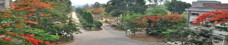 Đại Học Nông Lâm Thành Phố Hồ Chí Minh