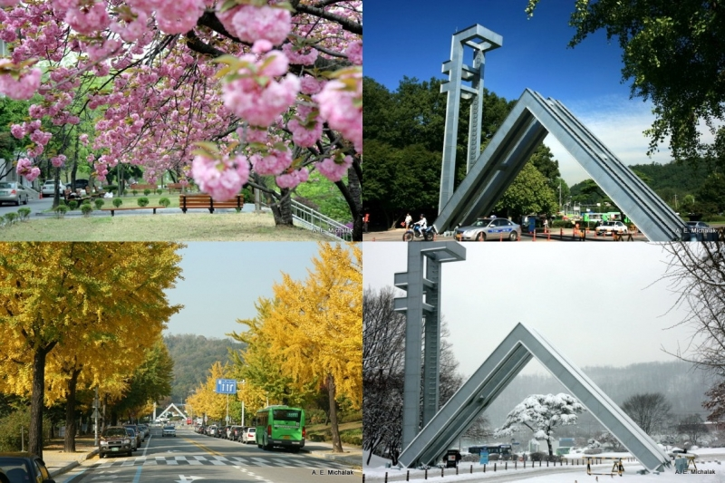 Khung cảnh bốn mùa tuyệt đẹp tại Đại học Quốc gia Seoul.