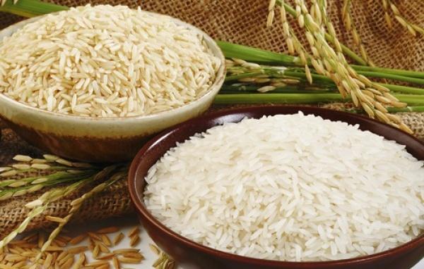Đại lý gạo Hiệu Phú
