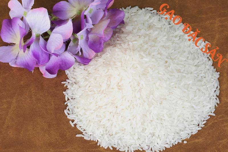 Đại lý gạo Hoa Gạo cung cấp các loại gạo chất lượng cao, uy tín.