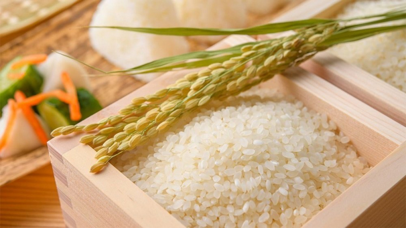Đại lý gạo Tiến Nhật