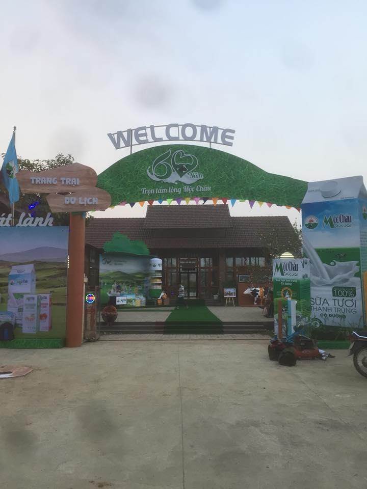 Trang trại du lịch bò sữa Dairy Farm Mộc Châu
