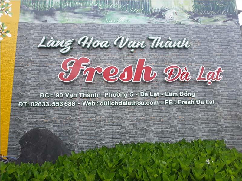 Van Thanh Flower Village is the largest flower village in Dalat
