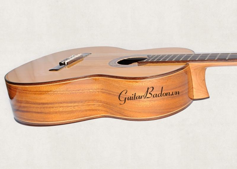 Đàn Guitar Classic C-550-D