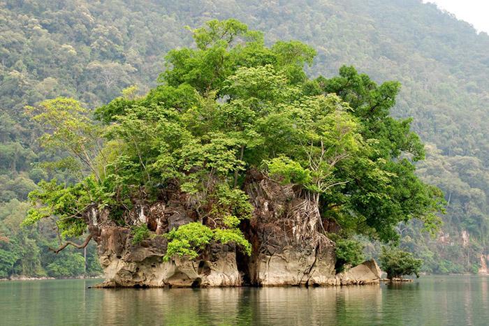 Đảo Bà goá