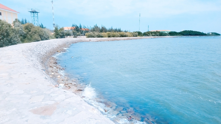 Đảo Cù Lao Câu