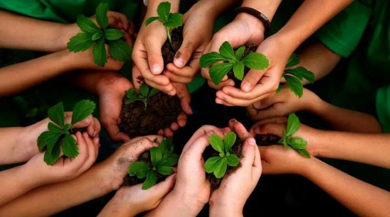 Đạo đức sinh trưởng dưới ánh nắng của lòng tốt - Khuyết danh