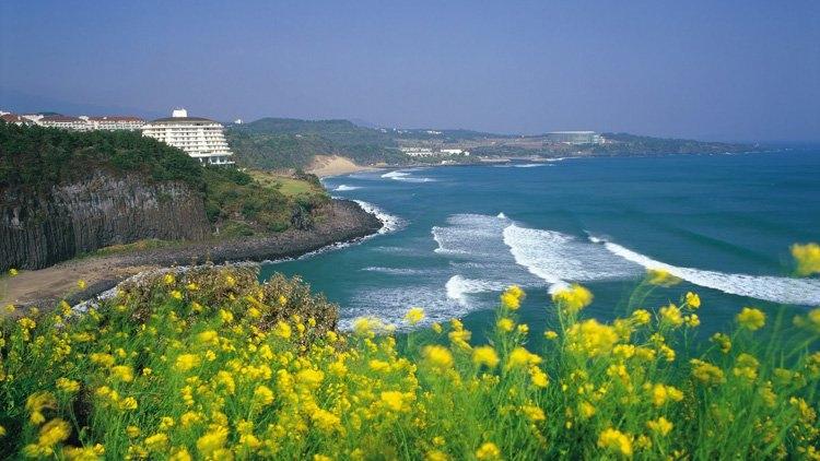Hòn đảo Jeju xinh đẹp hấp dẫn khách du lịch