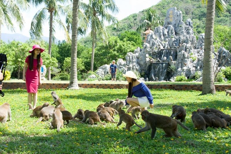 Du lịch đảo khỉ