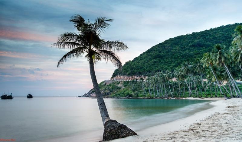 Thiên đường trên đảo