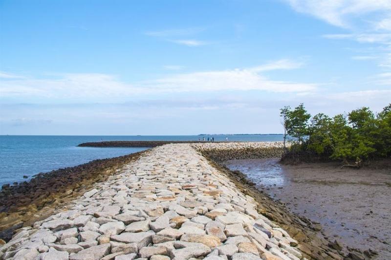 Con đường đá trải dài ven biển