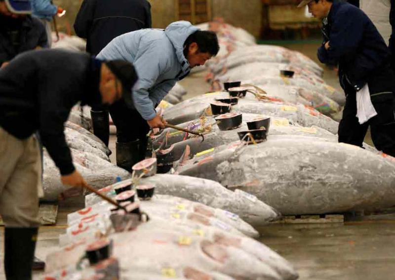 Chợ cá Tsukiji (Nguồn: Vietnamnet)