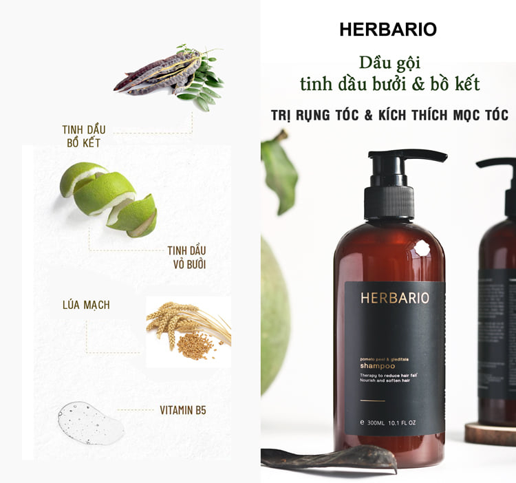 Dầu gội Vỏ bưởi & Bồ kết Herbario