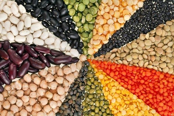 Đậu – thực phẩm ngừa loãng xương cực kỳ hiệu quả