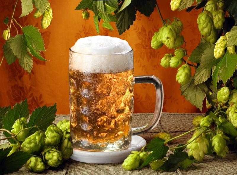Bia có tác dụng cân bằng độ pH của da đầu