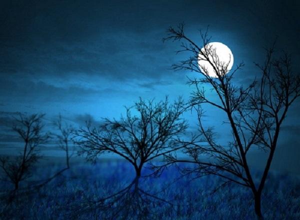 Một lúc sau, trăng đã gối đầu lên rặng cây phía xa để rồi sau đó lấp ló trên ngọn tre già.