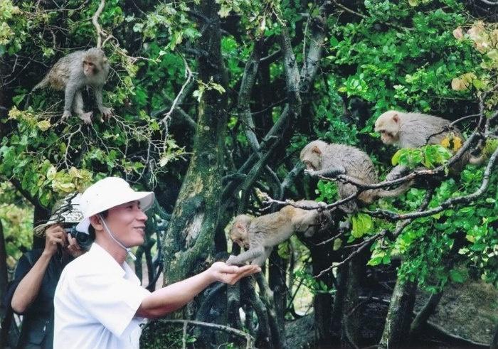 Đảo Rều (Đảo Khỉ)