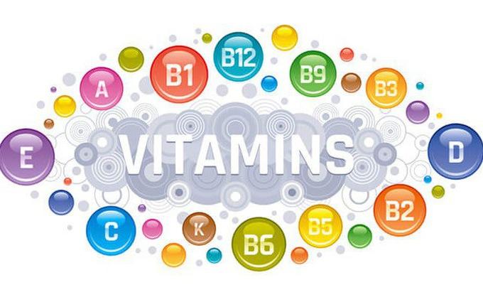 Top 10 địa chỉ bán Vitamin chất lượng, uy tín nhất tại Hà Nội