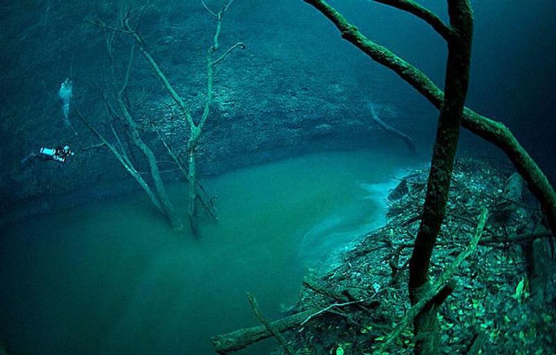 Hang động dưới nước Cenote Angelita