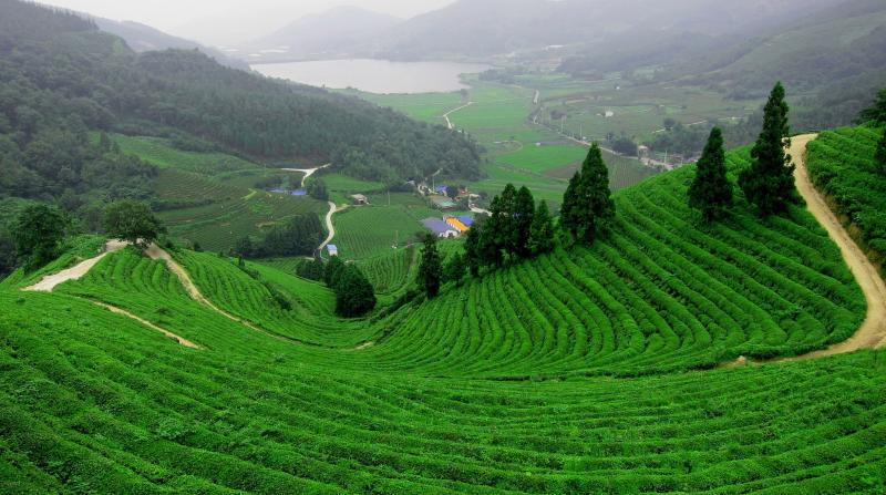 Top 14 địa điểm du lịch lý tưởng nhất Thái Nguyên