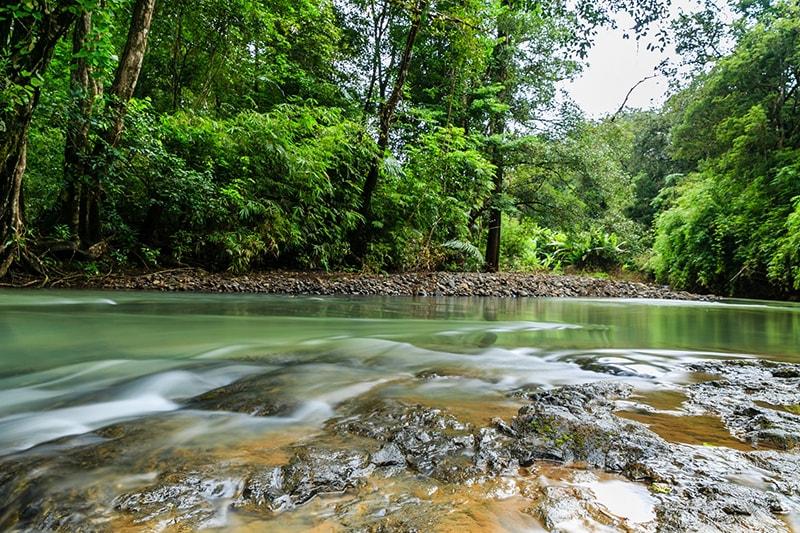 Top 10 địa điểm du lịch tuyệt vời nhất Bình Phước