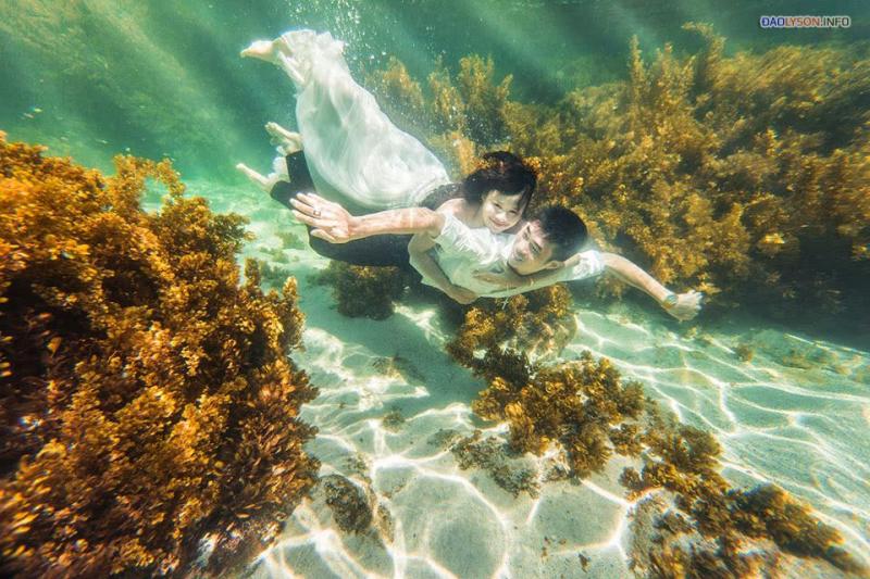 Thời gian chụp ảnh dưới nước đẹp chắc chắn là ban ngày