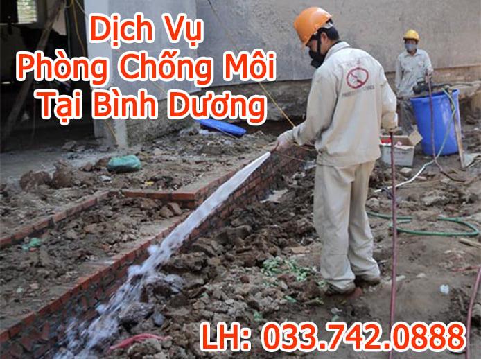 Dịch Vụ Diệt Mối Tại Bình Dương - CTY Minh Long