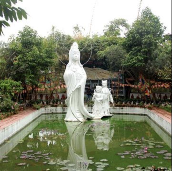 Quang cảnh tại nghĩa trang thú cưng - Bảo Sinh viên