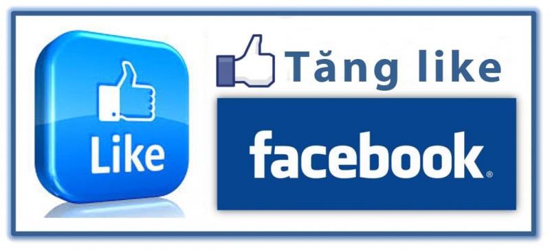 Dịch vụ tăng like Facebook Thời Đại Số