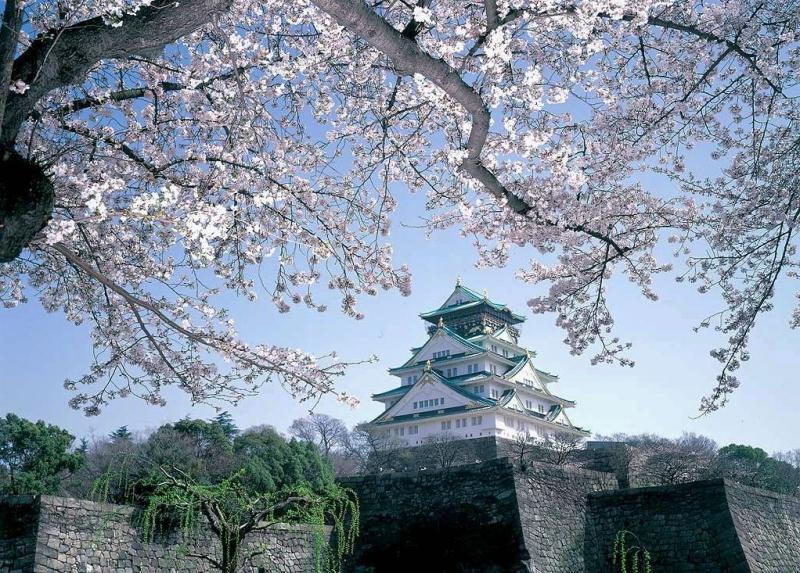 Tòa thảnh Osaka cổ kính