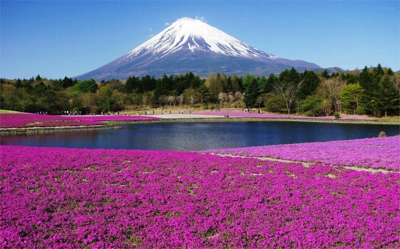Ngọn núi Phú Sĩ linh thiêng