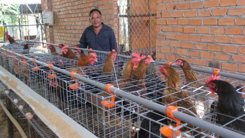 Diễn đàn trao đổi các vấn đề nông nghiệp: http://agriviet.com