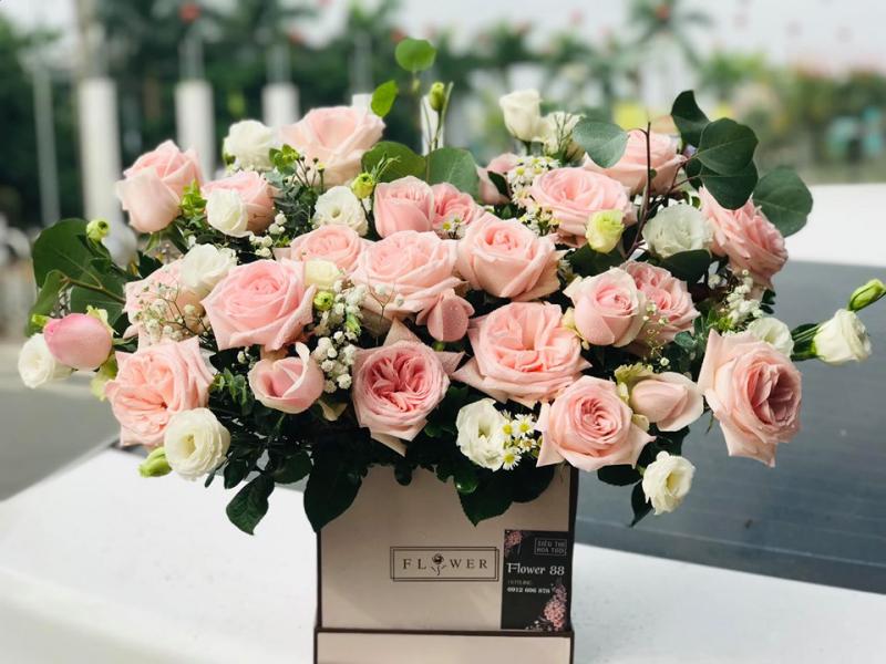 Điện hoa Tuyên Quang - Flower 88