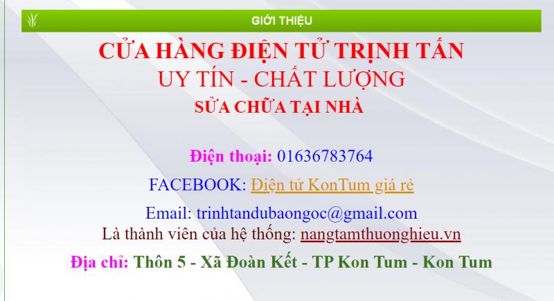 Điện tử Trịnh Tấn