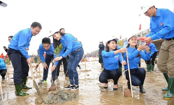 Các đoàn viên hưởng ứng tết trồng cây