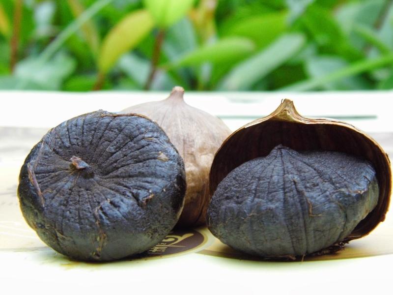 Củ tỏi đen có tác dụng trong việc điều trị ung thư