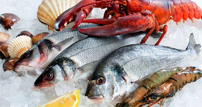 Dinh dưỡng từ động vật và thủy hải sản