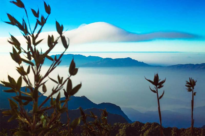Pu Ta Leng đỉnh núi của những tín đồ ưa dịch chuyển