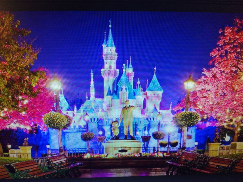Disney's Magic Kingdom (Mỹ)