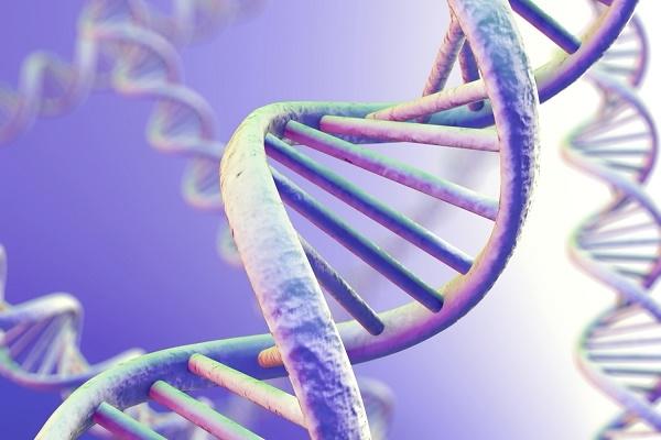 Di truyền – nguyên nhân gây bệnh tiểu đường