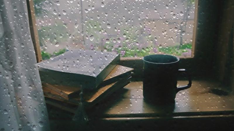 Ngày mưa ngồi đọc sách cùng một tách cacao nóng là một thú vui tao nhã
