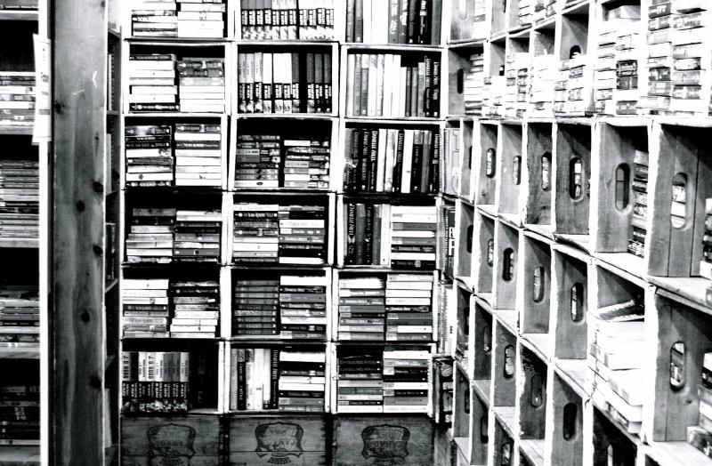 Đọc nhiều đọc rộng