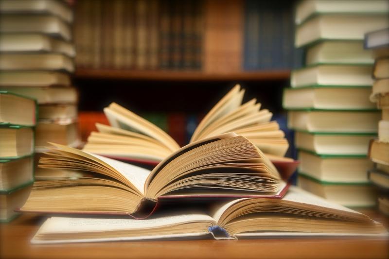 Nên đọc thêm một số chủ đề khác ngoài sách giáo khoa giúp nâng cao hiệu quả khi làm phần bài đọc hiểu