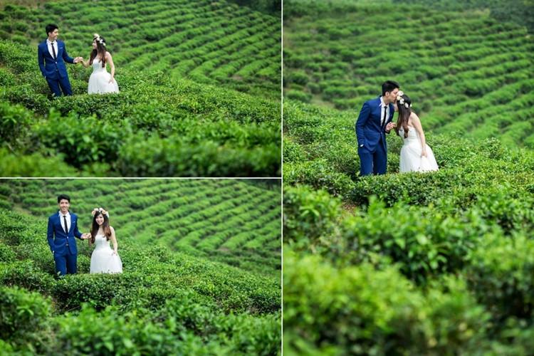 Nắm lấy tay nhau cùng bước đi trên những đồi chè thơ mộng càng làm cho tấm ảnh cưới thêm sống động hơn