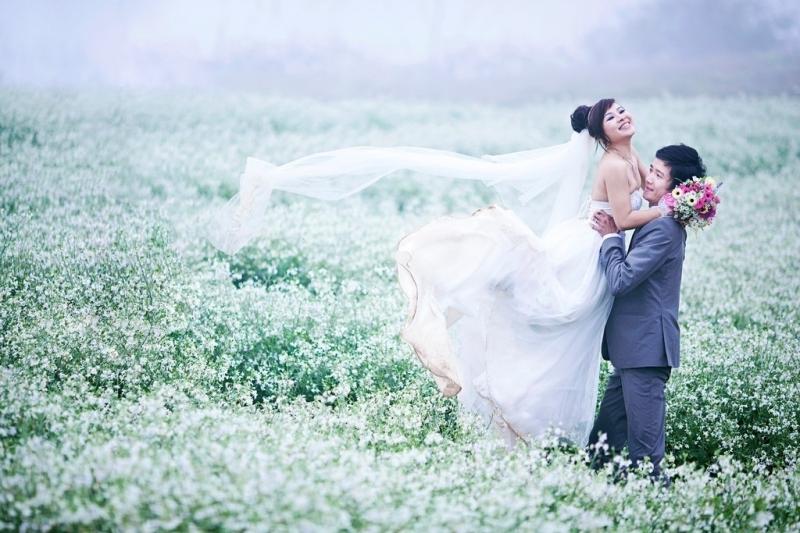 Đồi hoa cải trắng tinh khôi sẽ cùng hòa quyện vào hạnh phúc đôi lứa