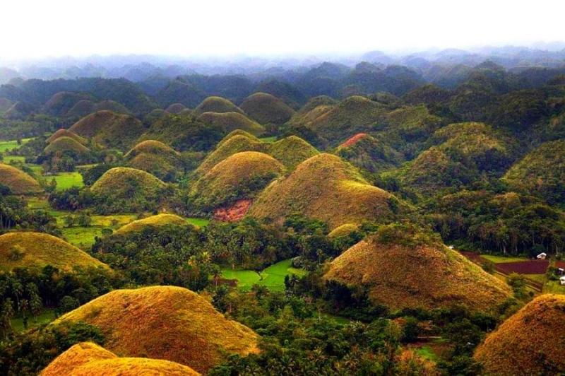 Đồi sô cô la, đảo Bohol, Philippines